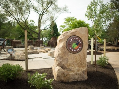 Nature Discovery Area